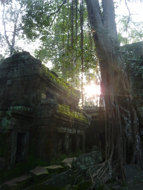 sunrise in Cambodia